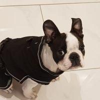 Frieda_Okt19_5