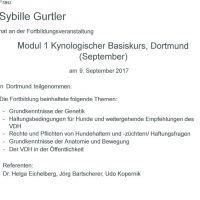 2017_0909_VDH_Modul1_Sybille