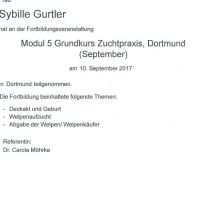 2017_1009_VDH_Modul5_Sybille